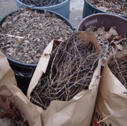 yard waste rubbish